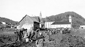 Holy Cross, 1925 Harvesting Potatoes